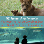 Homeschool Freebie! Visiting the North Carolina Zoo and Aquariums