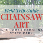 Chainsaw Art in a North Carolina State Park