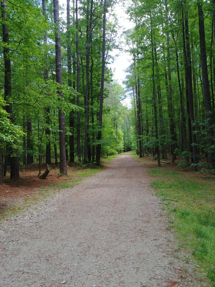 Graylyn Multiuse Trail in Umstead is stroller friendly.